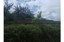 Tanah-Sumedang-2