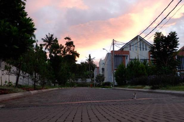 Rumah Modern Asri dan Ramah Lingkungan 13961371