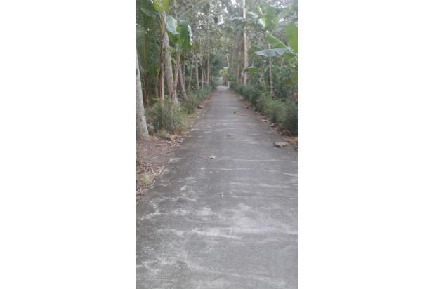 Dijual Tanah Cocok Untuk Investasi Daerah Cermai, Panjatan, Kulon Progo 15830081