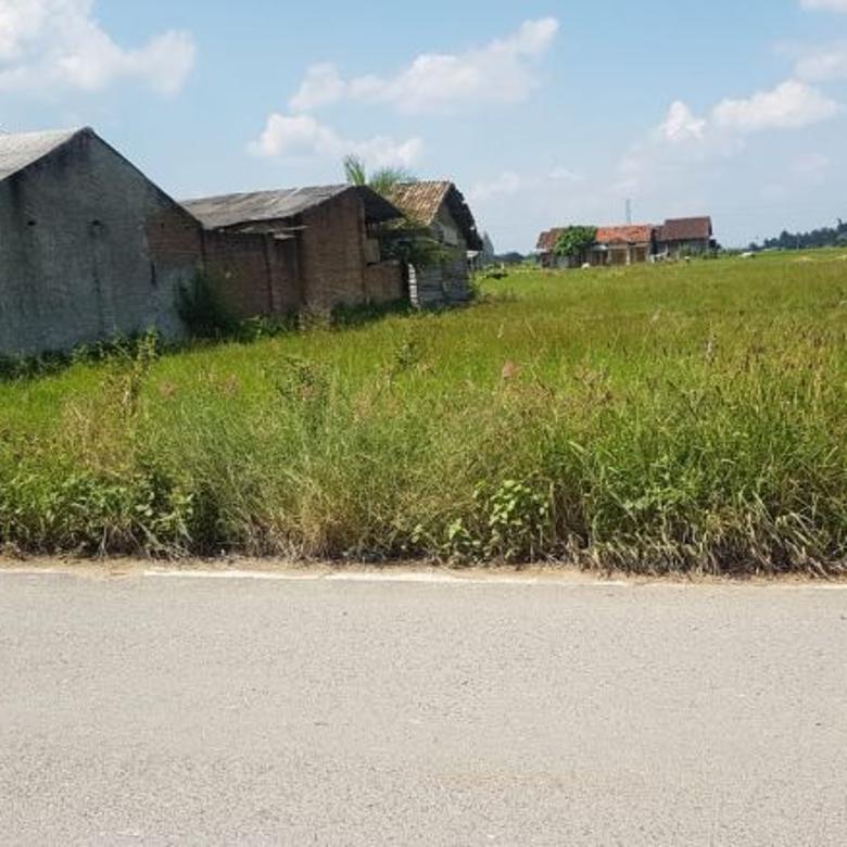 Tanah-Bandar Lampung-2