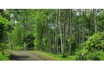 Kavling dg pemandangan bagus, cocok untuk villa,rmh retret, View pegunungan