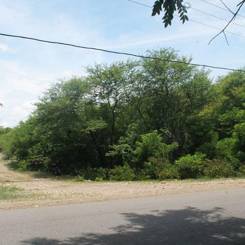 Tanah dijual di Kab. Kupang