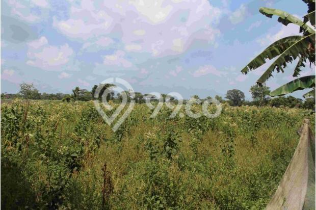 Kapling Prambanan, Ratusan Meter Ke Jl. Solo Km. 15 14371425