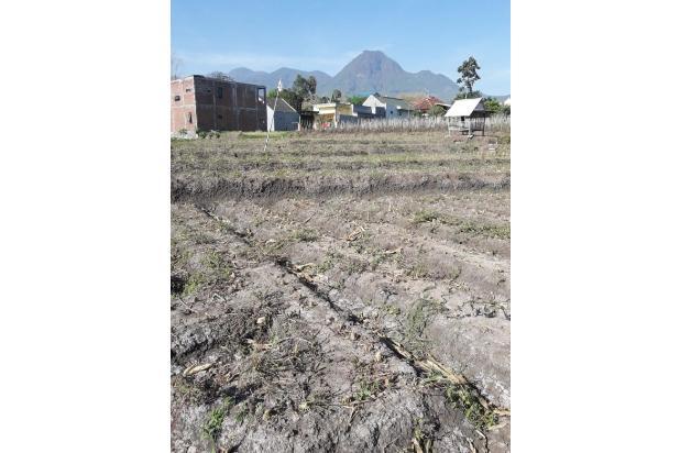 Rp4,53mily Tanah Dijual