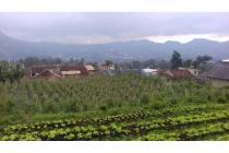 Dijual Lahan Pertanian Lokasi Startegis di Lembang Bandung