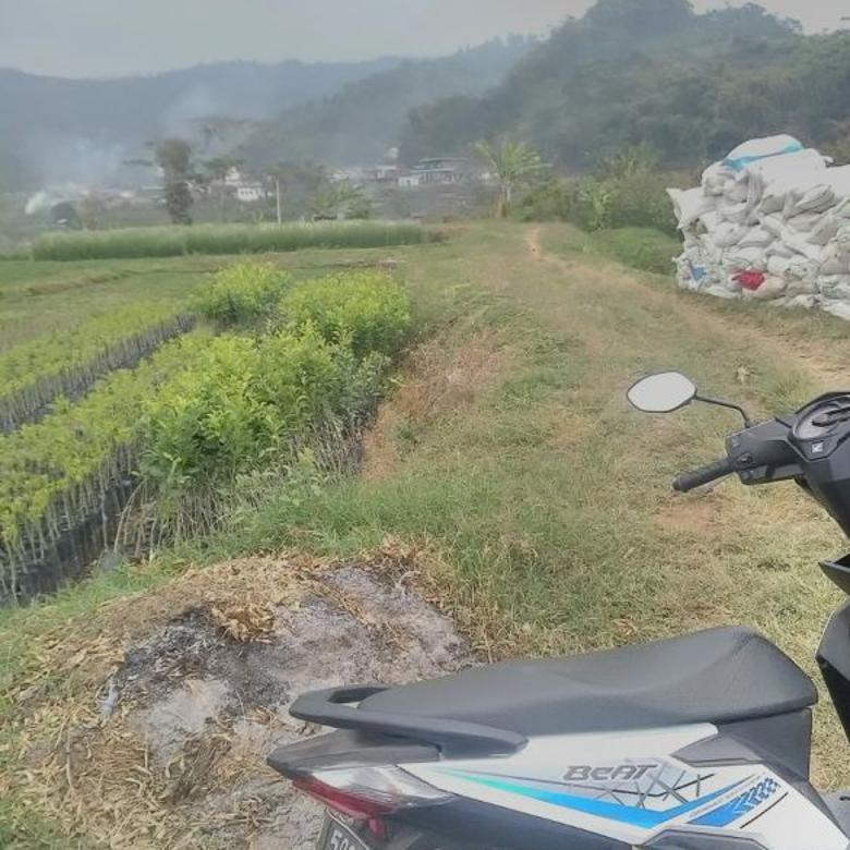 Tanah murah dan subur di Gunungsari Batu