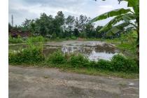 Tanah sawah di jl.kabupaten