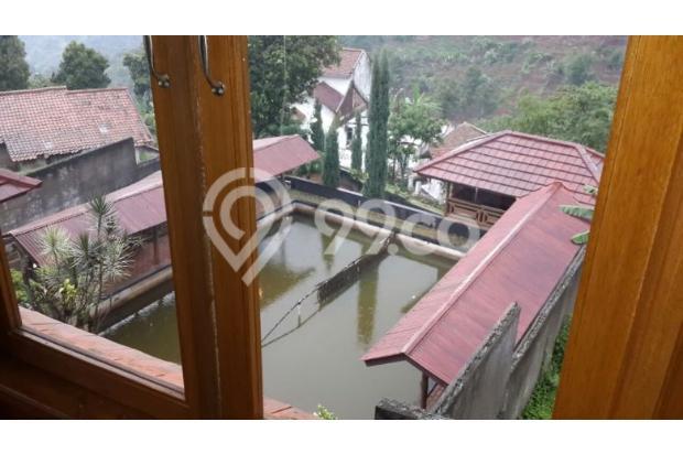 Rumah Villa Mewah Kayu Jati Asli Modern View Kota Bandung Indah 15052711