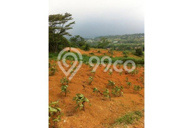 Dijual Tanah di Kawasan Puncak 2 Hambalang I 2527076