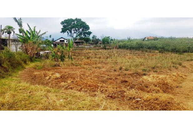 Rp2,02mily Tanah Dijual