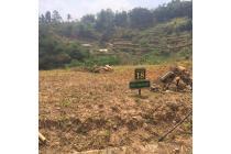 Rp510jt Tanah Dijual