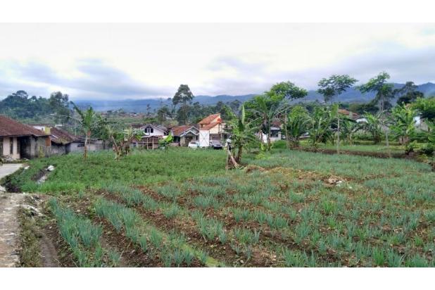 Rp18,4mily Tanah Dijual