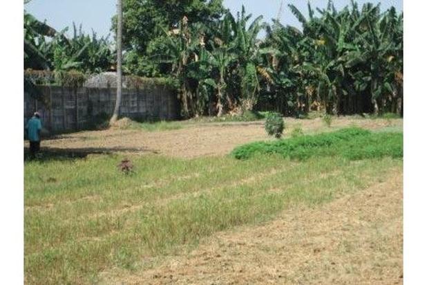 Rp33,2mily Tanah Dijual
