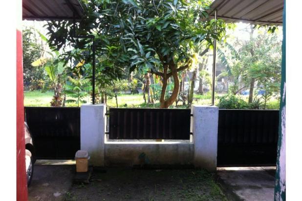 Rumah disewa Sidoarjo 12398769