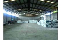 Dijual Kavling dan Pabrik Balaraja Jl. Warudoyong, Jayanti, Tangerang