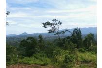 Tanah-Bogor-24