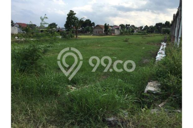 Tanah Murah Condongcatur, Jual Tanah Luas Cocok Untuk Kost Barat Amikom 9840282