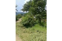 Tanah-Bogor-1