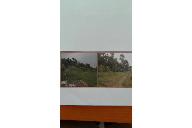 Rp94,2mily Tanah Dijual