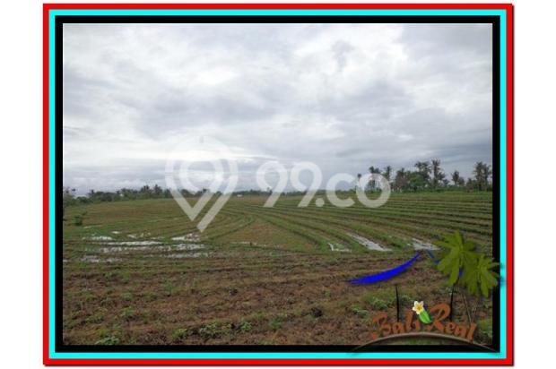 Lokasi Asyik Harga Menarik, 800 m2 View laut, sawah dan gunung di Tabanan 3873822