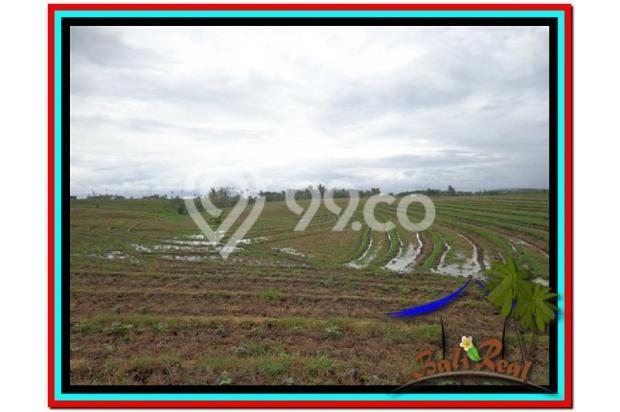 Lokasi Asyik Harga Menarik, 800 m2 View laut, sawah dan gunung di Tabanan 3873823
