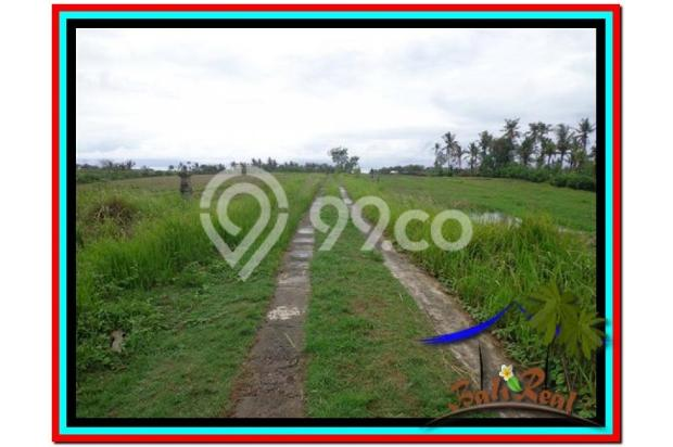 Lokasi Asyik Harga Menarik, 800 m2 View laut, sawah dan gunung di Tabanan 3873825