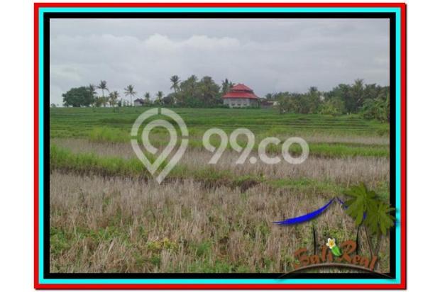 Lokasi Asyik Harga Menarik, 800 m2 View laut, sawah dan gunung di Tabanan 3873828