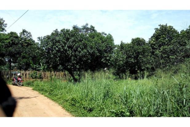 Image Result For Pulsa Murah Di Tanah Luas