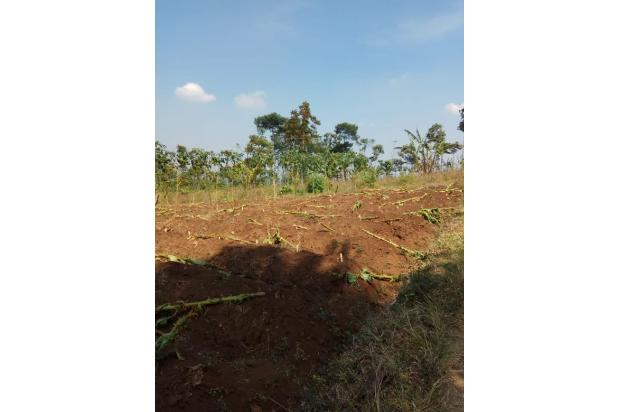 Rp20,4mily Tanah Dijual