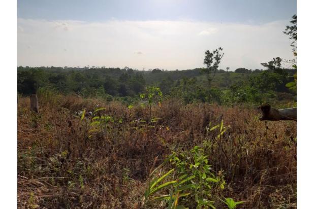 Rp7,84mily Tanah Dijual