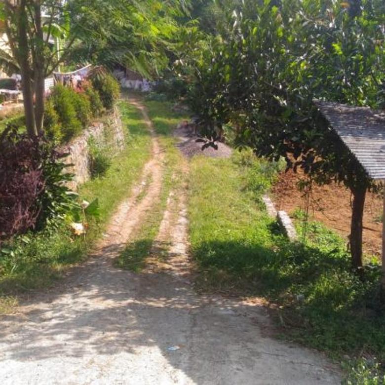 Tanah Luas di Mega Mendung Bogor