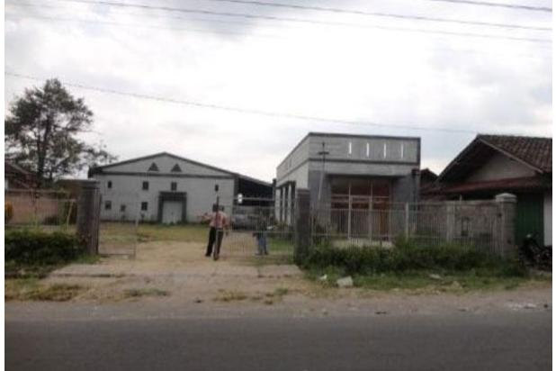 Gedung Luas di Kalasan 18273831