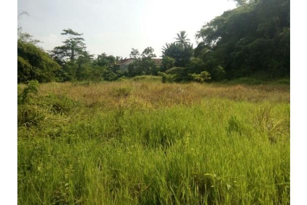 Tanah 3,715m2 Untuk Clutser di Villa Balaraja 10373198