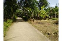 Info Tanah Daerah Kulonprogo Jogja, Tanah  Dijual Dekat Stadion Wates