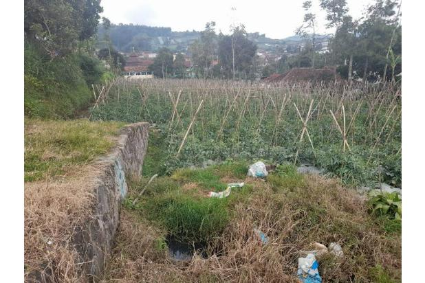 Rp1,91mily Tanah Dijual