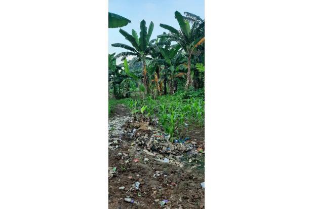 Rp151mily Tanah Dijual