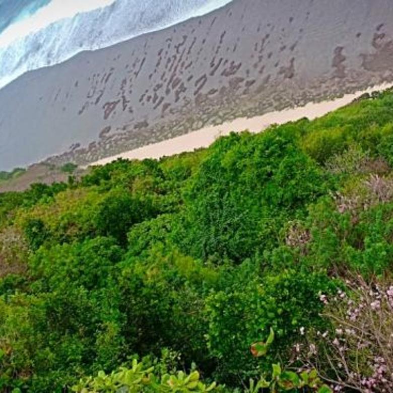 tanah los tebing pecatu, kuta selatan - Bali