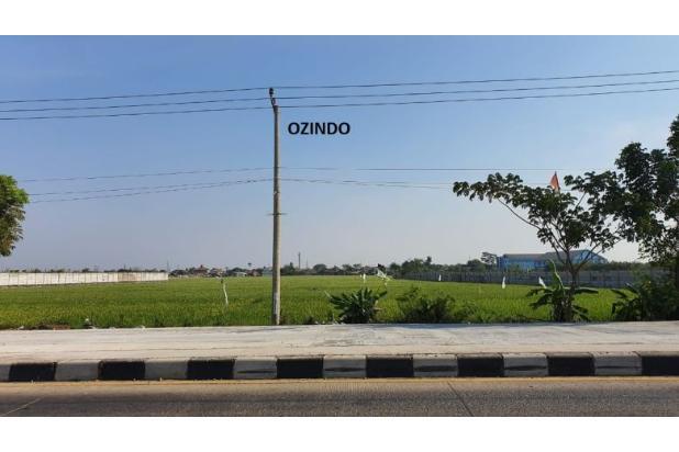 Rp87mily Tanah Dijual