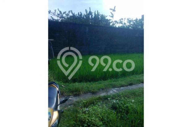 Tanah Dijual Jogja Dekat Jl.Wonosari, Tanah Murah Dekat Komplek Perum 12273198