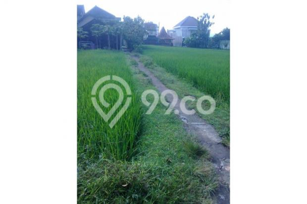 Tanah Dijual Jogja Dekat Jl.Wonosari, Tanah Murah Dekat Komplek Perum 12273201