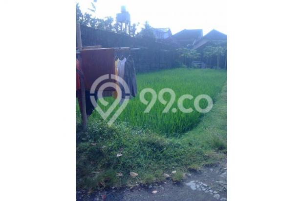 Tanah Dijual Jogja Dekat Jl.Wonosari, Tanah Murah Dekat Komplek Perum 12273204