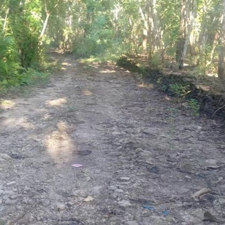 Tanah Dijual Caturharjo Pandak Bantul Yogyakarta hks5843