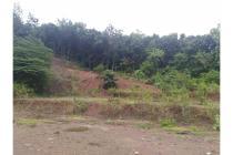 Tanah Dijual Jogja, Dijual Tanah Murah Luas 20.000 meter Di Pleret Bantul