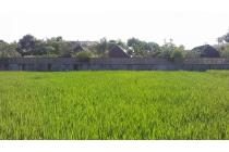 Land With View For Sale in Canggu Bali
