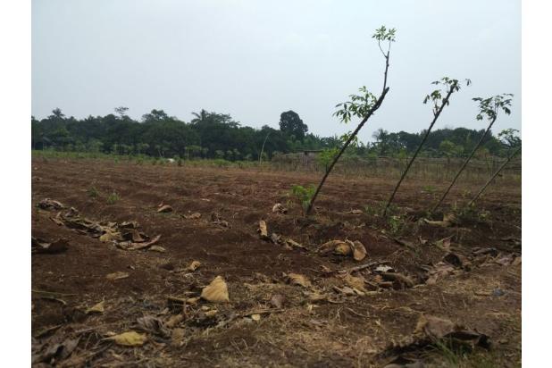 DiJual Tanah Kavling Murah Lokasi Strategis 13245090