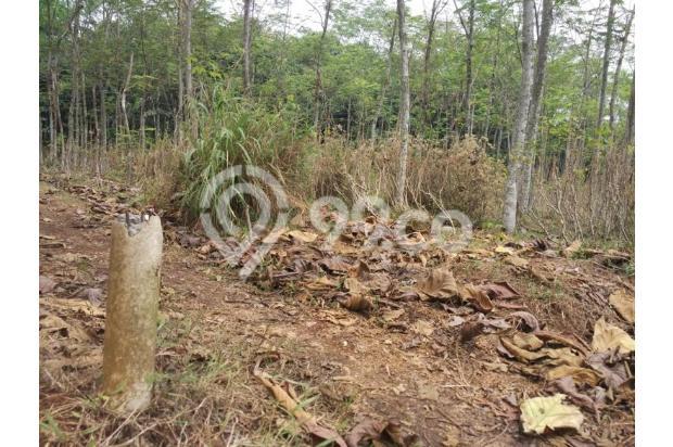 DiJual Tanah Kavling Murah Lokasi Strategis 13245093